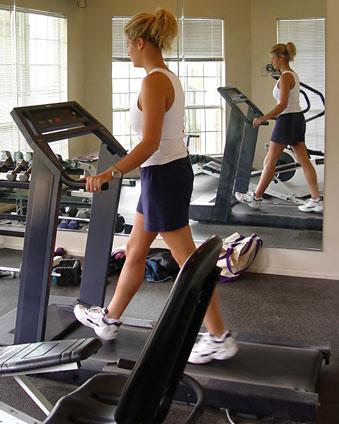 Fitness equipment stores houston tx 2014